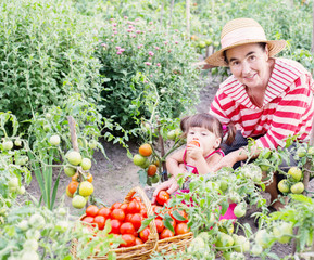 baby and grandmother in garden with tomatoes
