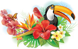 Fototapety Red hibiscus, toucan and tropical flowers