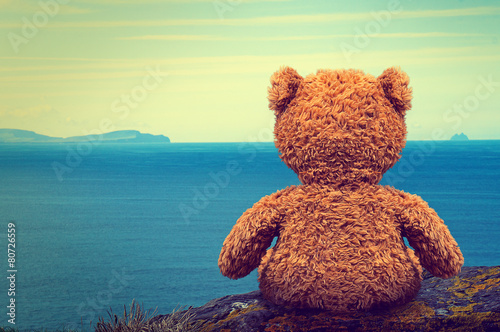 Lonely Teddy - 80726559