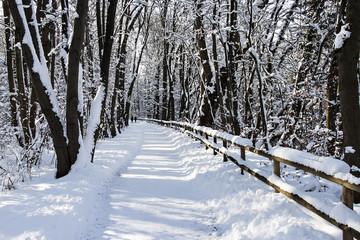 Walk along Isar