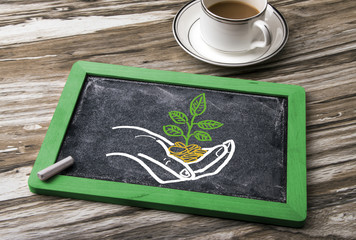 sapling hand drawing on blackboard
