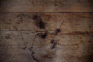 Bilder und videos suchen holzwurm - Holzwurm im fensterrahmen ...