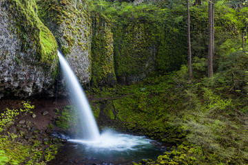 upper ponytail falls in Columbia river gorge, Oregon