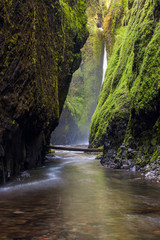 Oneonta falls in Columbia river gorge, Oregon