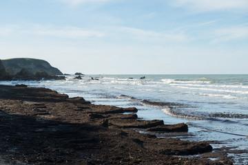 Inquinamento spiaggia di Punta Aderci
