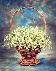 Beautiful  lily of the valley in a basket. Vintage retro hipster