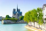 notre dame, Paris - 80754589