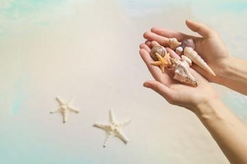 Hintergrund Sommer am Strand: Hände halten Muscheln