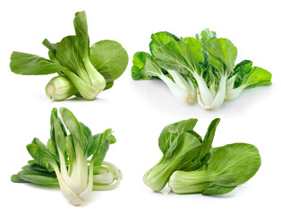 Bok choy (chinese cabbage or Qing geng cai) isolated on white ba