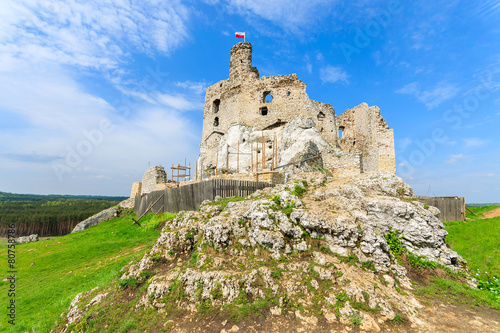 Ruins of medieval Mirow castle in spring time, Poland - 80758786