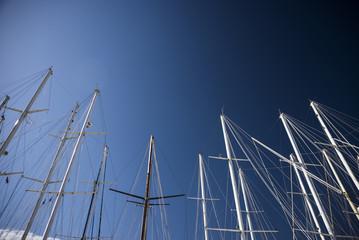 Boats masts