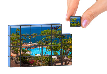 Hand and Tenerife Canary (my photo) puzzle