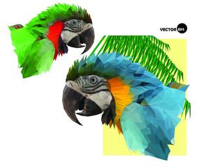two colorful macaw parrot`s head and palm tree in low polygon