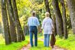 Senior Mann und Frau halten Hand bei Spaziergang - 80763519