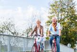 Senioren Paar mit Fahrrädern auf Brücke