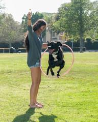 Girl teaching her Labrador puppy to jump through hoop