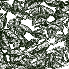 Vector ornate seamless  patterns with leaves at engraving style