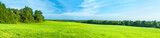 summer rural landscape a panorama with a field and the blue sky - 80770771