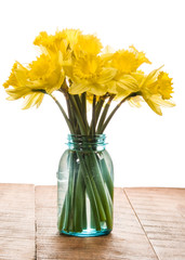 Bouquet of yellow daffodil flowers in a jar