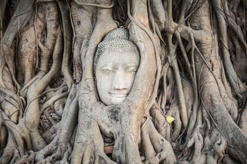 Buddha head in Wat Mahatat