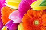 Gerbera und Tulpen
