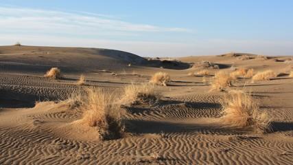 désert d'Iran
