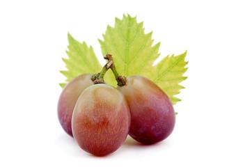 Violet grape closeup