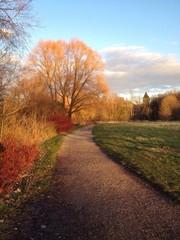 Weg Herbstsonne