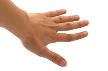 mano aperta