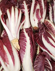 radicchio di TREVISO for sale in fruit and vegetable store