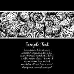 Hand drawn seamless pattern with various seashell