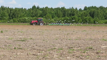 Agriculture tractor ploughing soil sping field