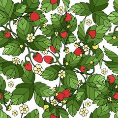 Ripe strawberry white pattern