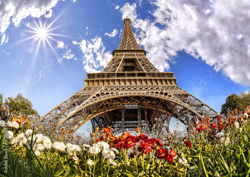 Eiffel Tower with flowers  in Paris, France