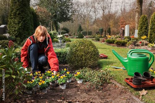 Leinwanddruck Bild Planting flowers on a grave in spring