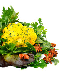 Yellow Squash Pattypan with different lettuce, water-cress, spin
