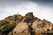 Cross on a stone mountain, Christian symbol - 80807787
