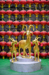 Golden goats in public chinese temple