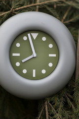 Clock In A Forest