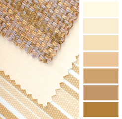 color design and color selection for interior