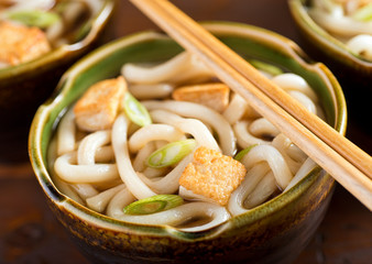 Udon Noodles with Tofu and Green Onion