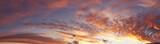 Summer sky - 80816525