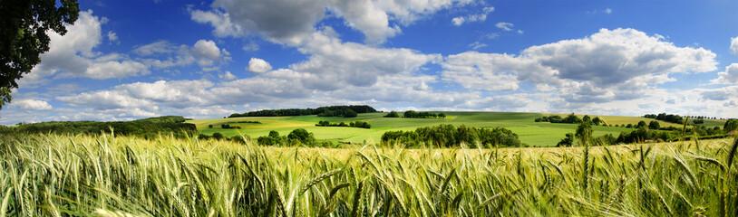 Saarland Panorama Natur –Landschaft bei Eiweiler © Petair