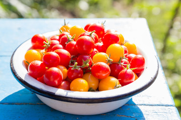 red and yellow cherry tomatoes in dish