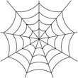 spider web isolated on white vector - 80832178