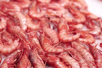 Seafood, shrimp, Central Market, Mercado Central, Valencia