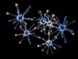 Neuronal Network.