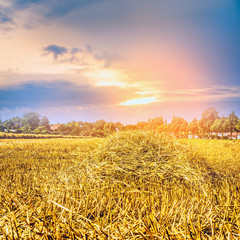 Agricultural landscape with straw field and sunrset