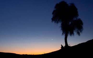 Silhouette of a man sitting alone under a tree
