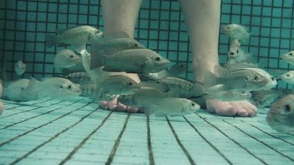 Underwater Fish Spa Pedicure Closeup
